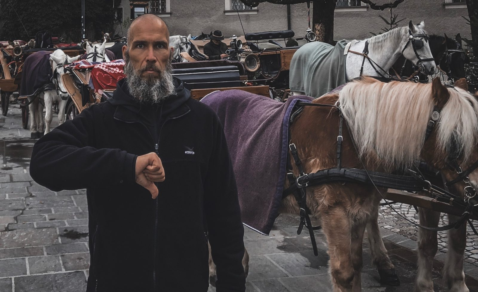 Wien – Salzburg – Innsbruck: Schluss mit Pferdequälerei!